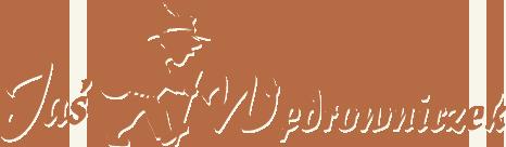 jas wedrowinczek logo